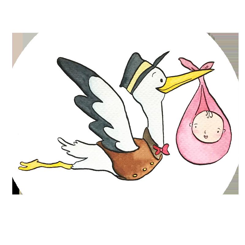 สัปดาห์แรกของการตั้งครรภ์